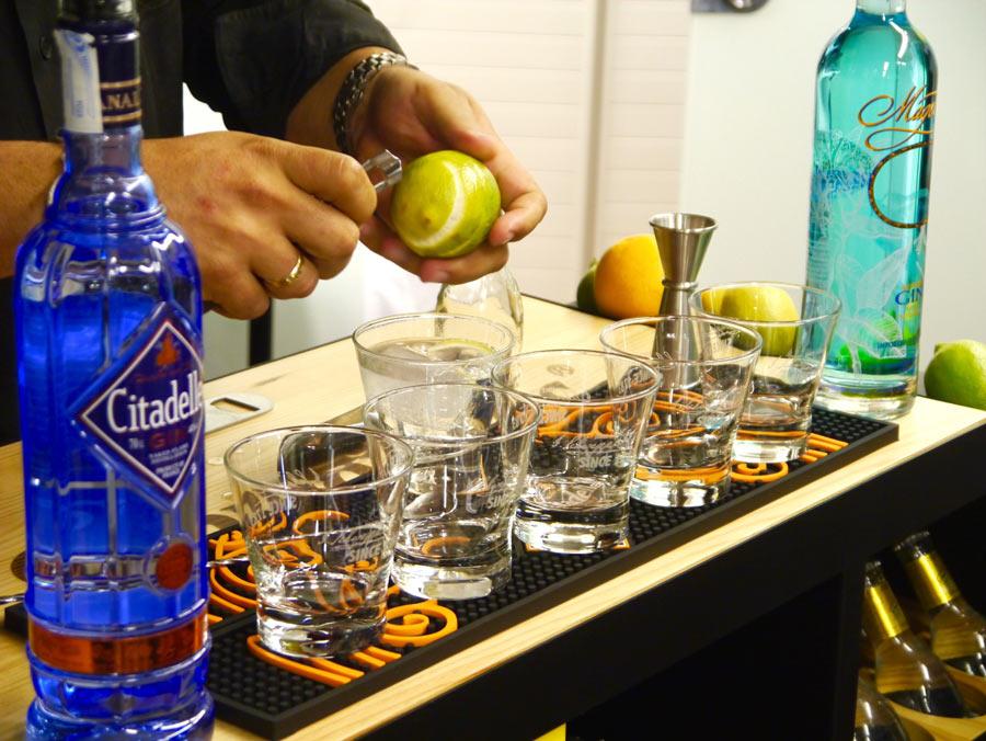 elivelimen fiesta del gin tonic